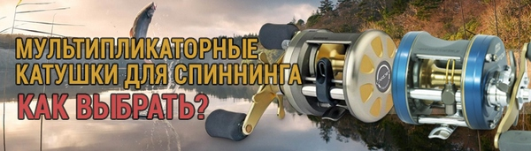 spinningline.ru/uploads/images/mult_01082017.jpg