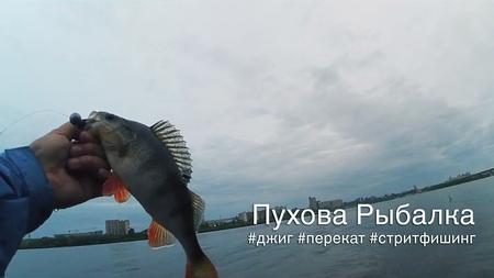 spinningline.ru/uploads/images/puh_08092017.jpg