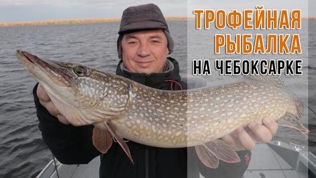 spinningline.ru/uploads/images/trof_28112017.jpg