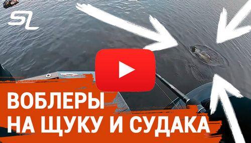spinningline.ru/uploads/images/vobleri_06122019.jpg